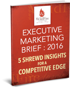 2016 Executive Marketing Brief – 5 Shrewd Insights for a Competitive Edge